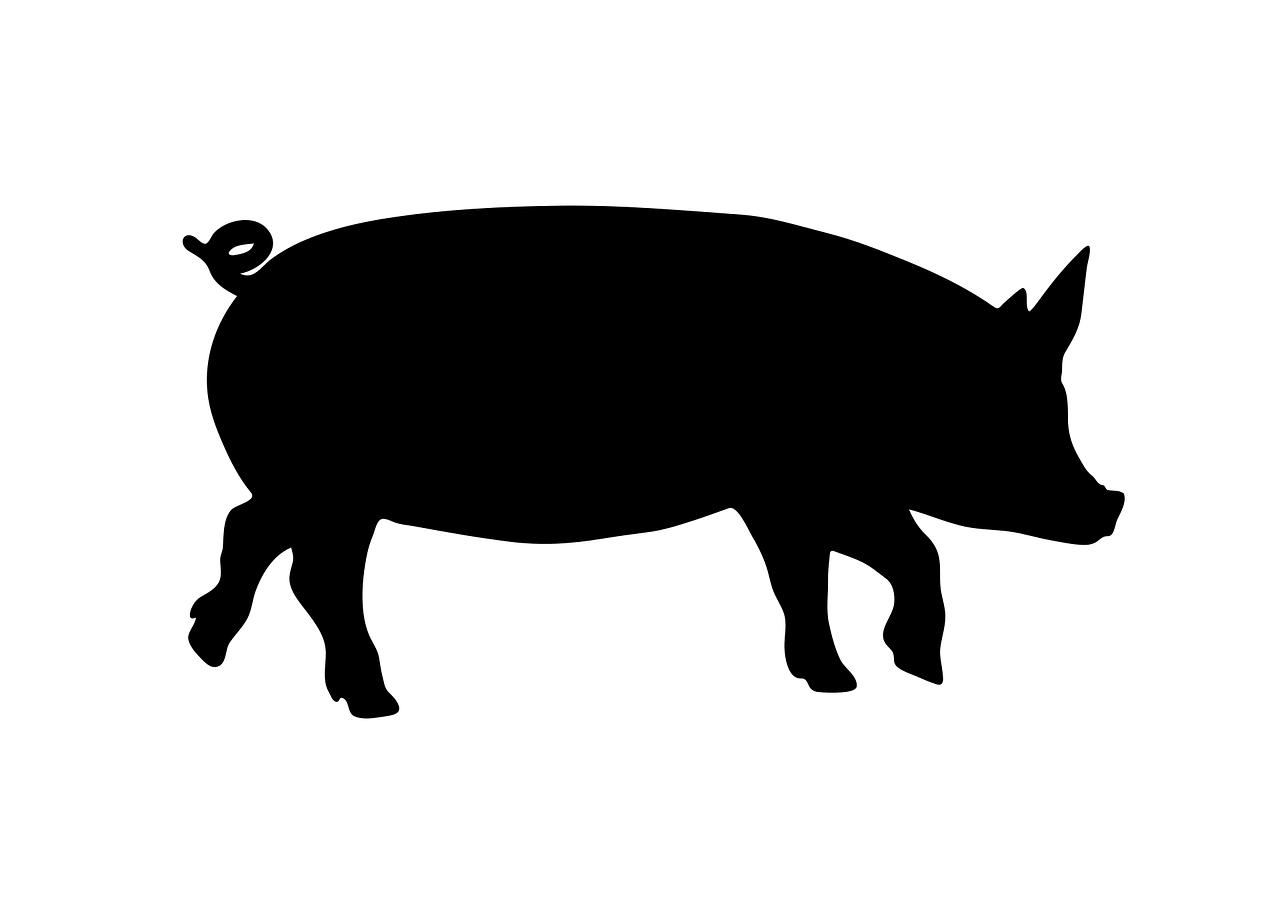 豚肉アレルギー
